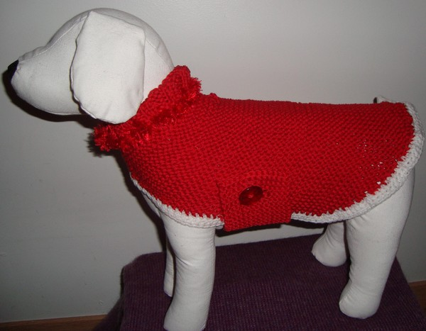 modele tricot pull pour chien